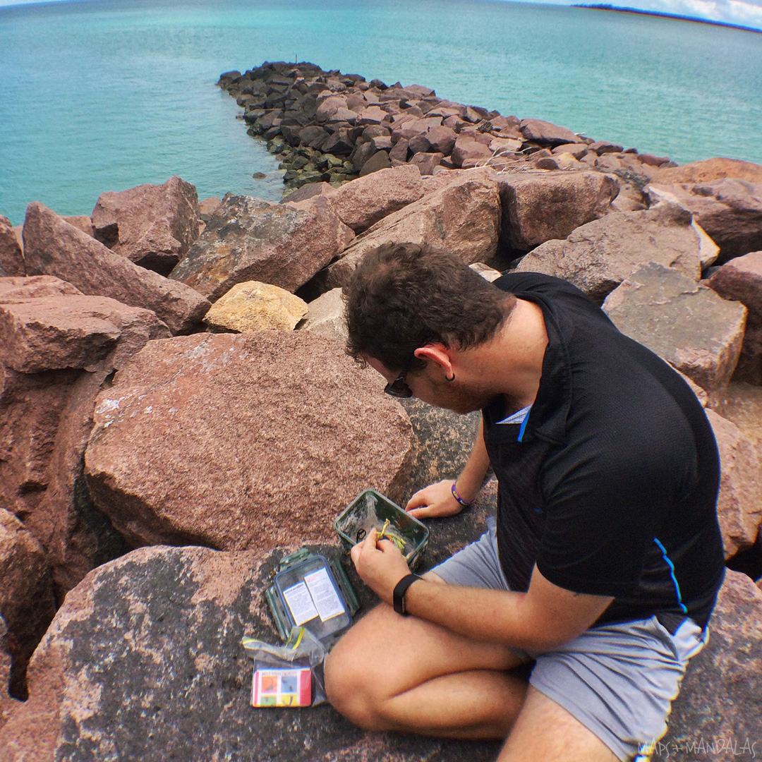 Everything You've Ever Wanted To Know About Geocaching