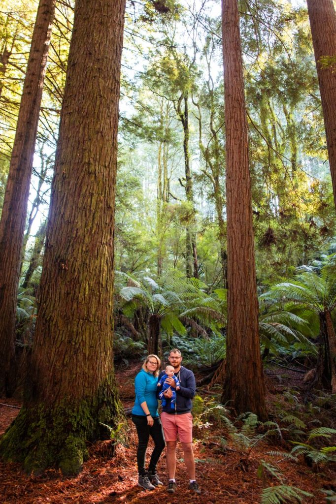 Family Portrait inside the Great Ocean Road Redwoods